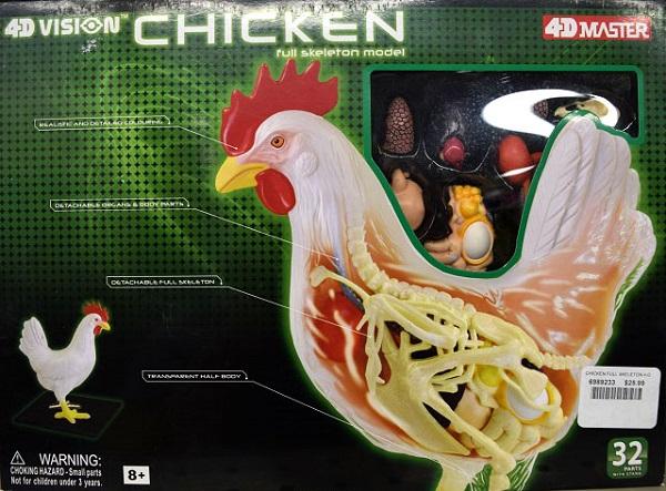 4D Chicken Puzzle.JPG