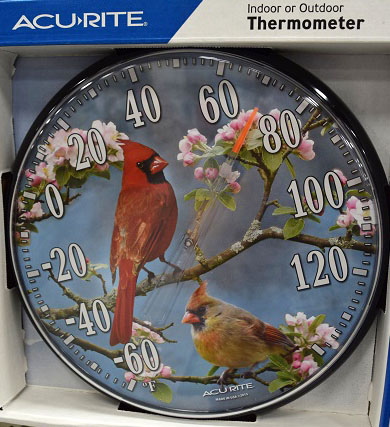 Bird Thermometer.JPG